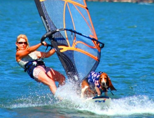 WHY WE WINDSURF – WHAT CGWA IS – & HOW IT HELPS